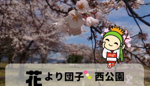 花より団子🍡かすり家のお団子でひとり花見 in 西公園