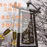 泡の湯温 泉三好荘アイコン