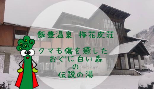 飯豊温泉 梅花皮荘(かいらぎそう)|クマも傷を癒した おぐに白い森の伝説の湯