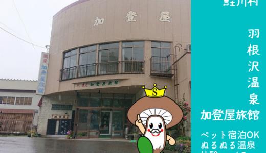 羽根沢温泉 加登屋旅館|ペット宿泊OK旅館!ぬるぬる温泉