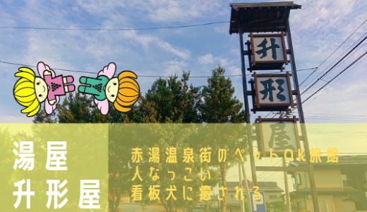 湯屋 升形屋|赤湯温泉のペットOK旅館 人懐っこい 看板犬に癒される〜ヾ(*´▽`)ノミ☆