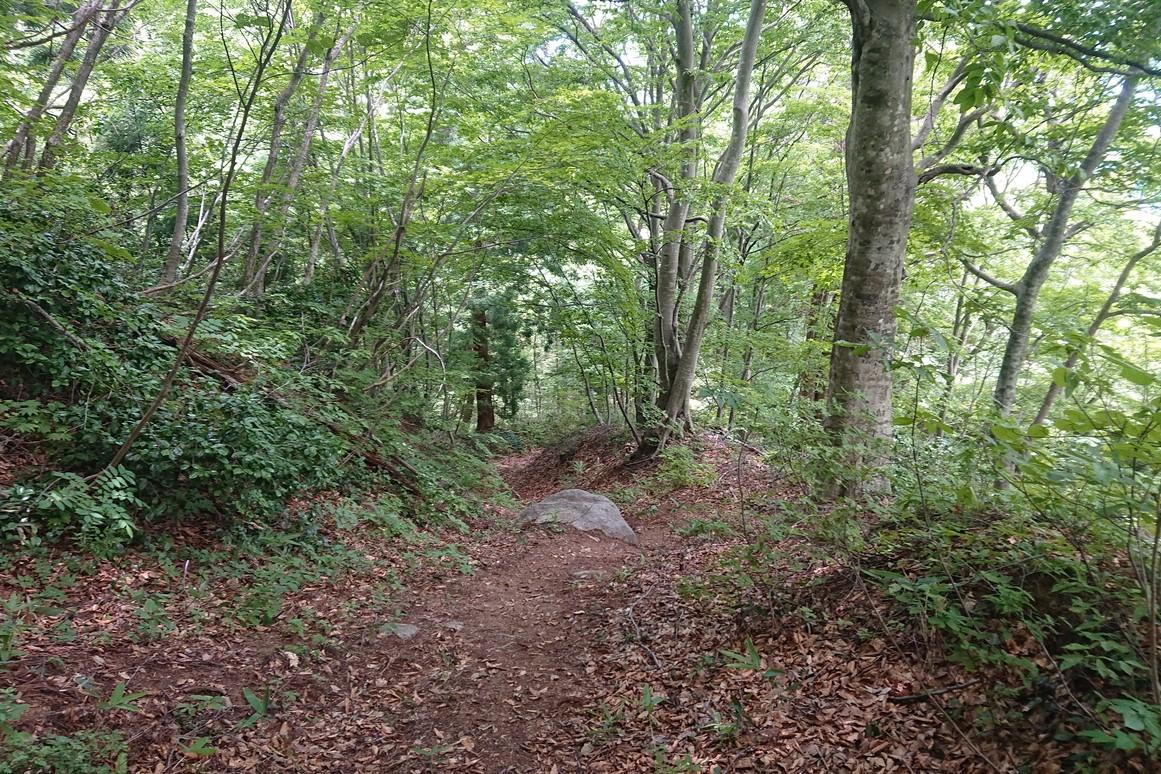 金峯山登山道1