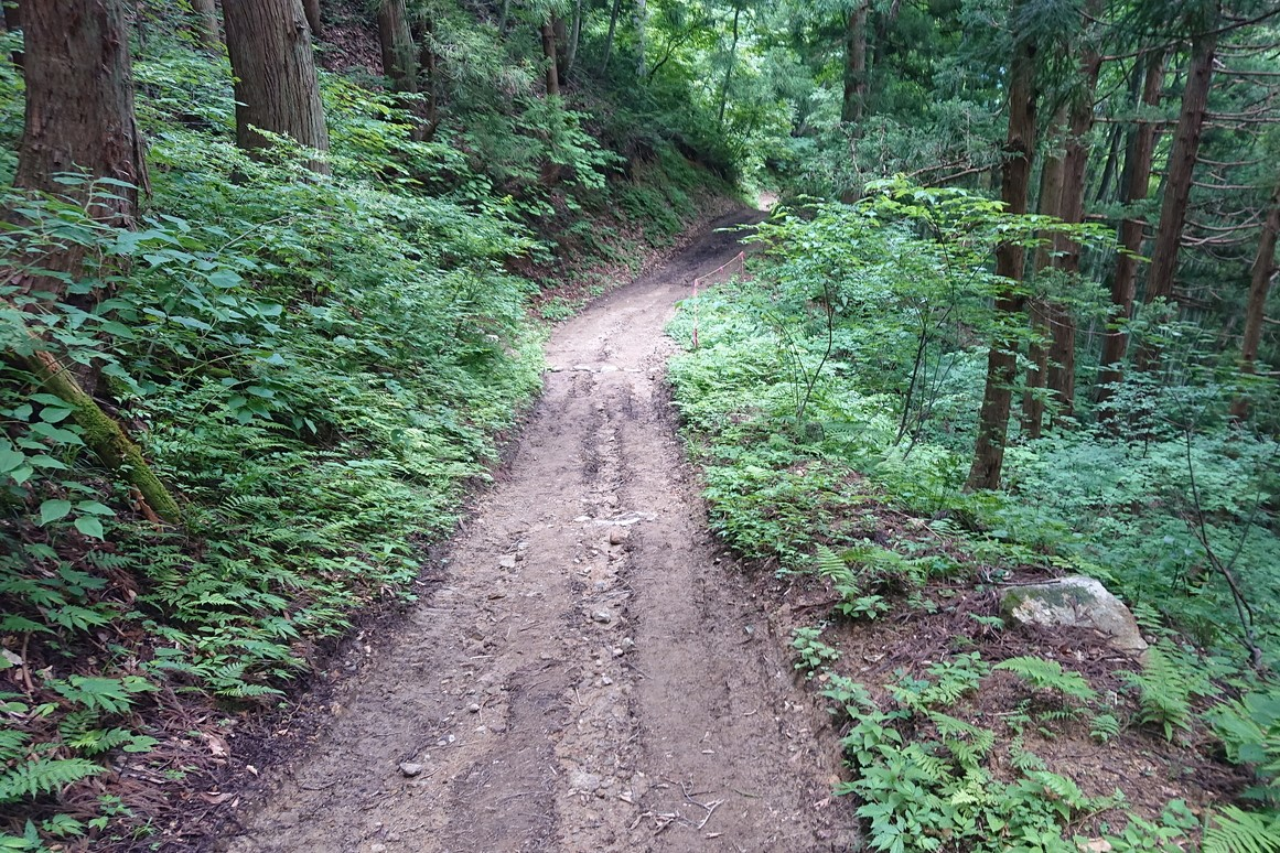 金峯山登山道2