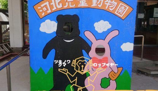 河北児童動物園|山形県唯一の動物園 – 河北町 –