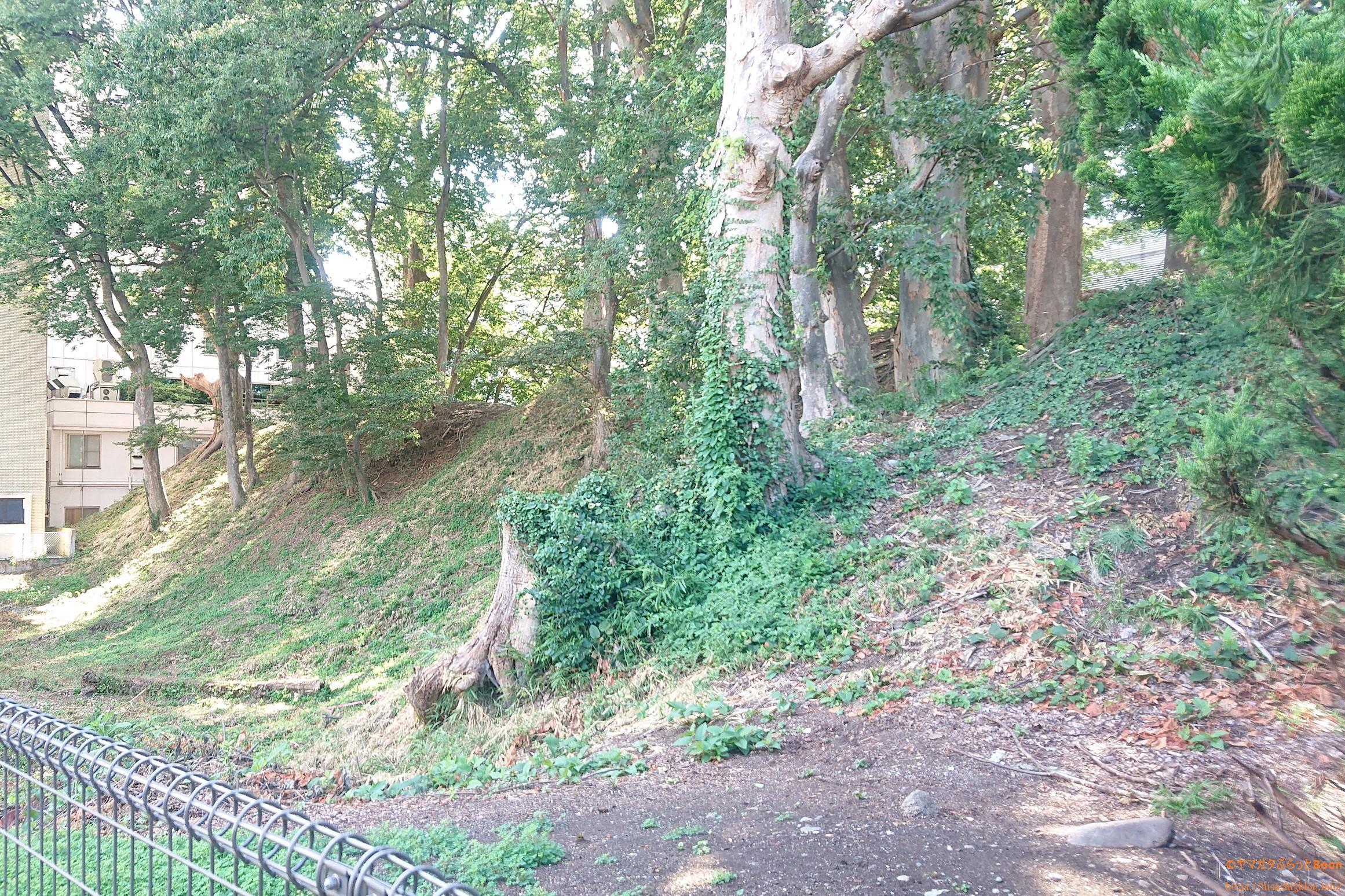山形城三の丸土塁跡1