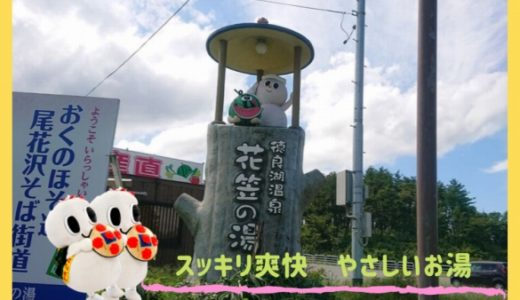 徳良湖温泉 花笠の湯|湯口のパワーストーンと 無料マッサージチェアでスッキリ爽快! – 尾花沢市 –