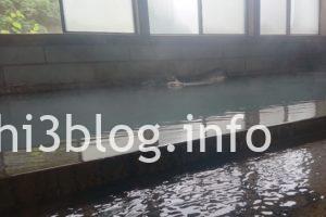 滑川温泉 福島屋の内湯浴室2