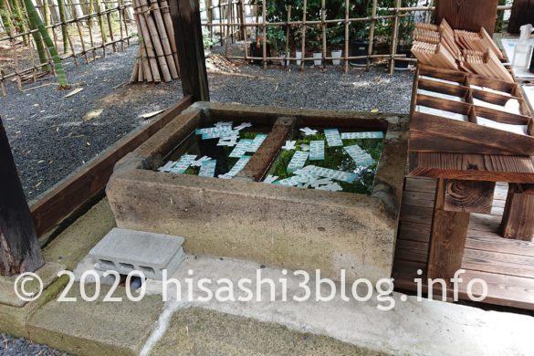熊野大社 水みくじ 3