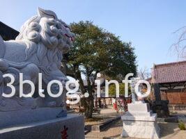 荘内神社の狛犬