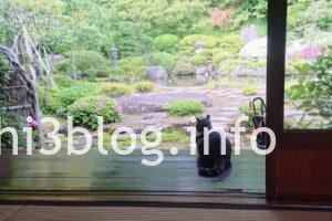 玉川寺のお庭1