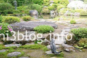 玉川寺の猫ちゃん1