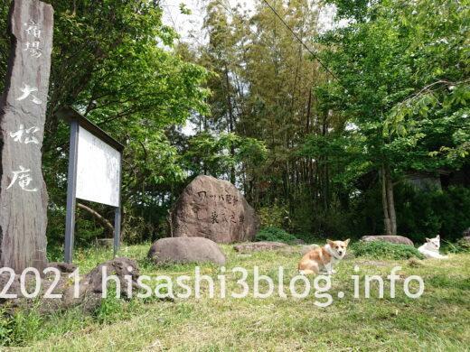 大松庵の敷地1